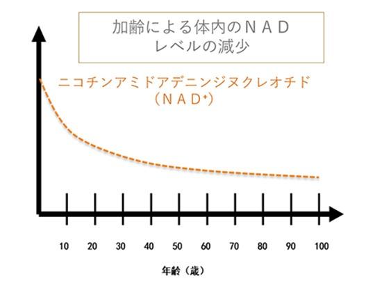 NMN_3_R
